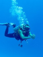 Gallery Diving
