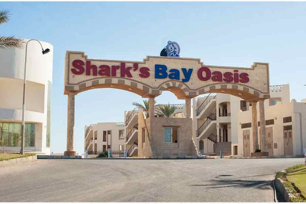 sharks bay oasis
